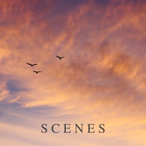scenes album cover